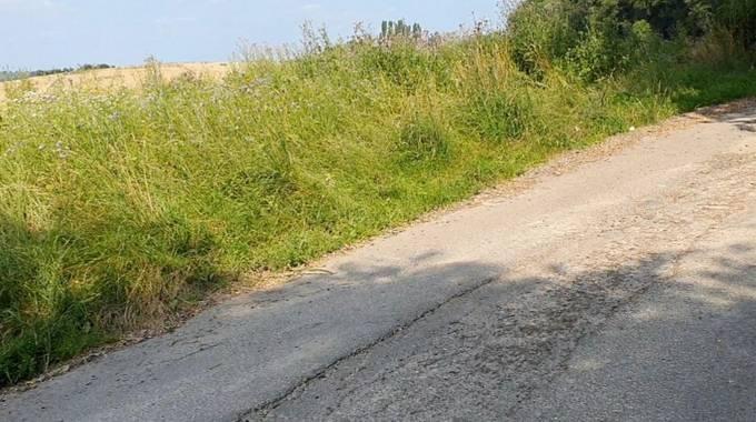 Beispiel eines sanierungsbedürftigen Wirtschaftsweges in Königswinter-Bockeroth